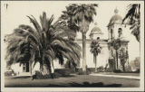 Church Belfrey and Palm Trees