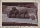 Peaches from San Jose, circa 1896