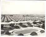 Santa Anita, California Assembly Center, 1942-1945