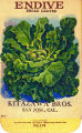 Endive, Broad Leaved, Kitazawa Bros., San Jose, Calif., circa 1918