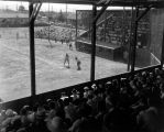 Baseball in San Jose, circa 1950-1960