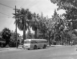 Bus on North First Street, San Jose, 1940