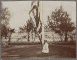 Front garden of Captain Merithew home including Carol Dunbar, age 3, 1897