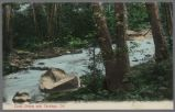 Postcard, Trout Stream near Saratoga, Calif., circa 1910