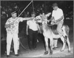 4th of July Donkey Baseball, circa 1960